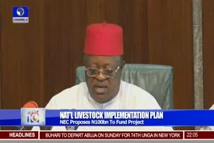 NEC Proposes N100bn To Fund National Livestock Projects