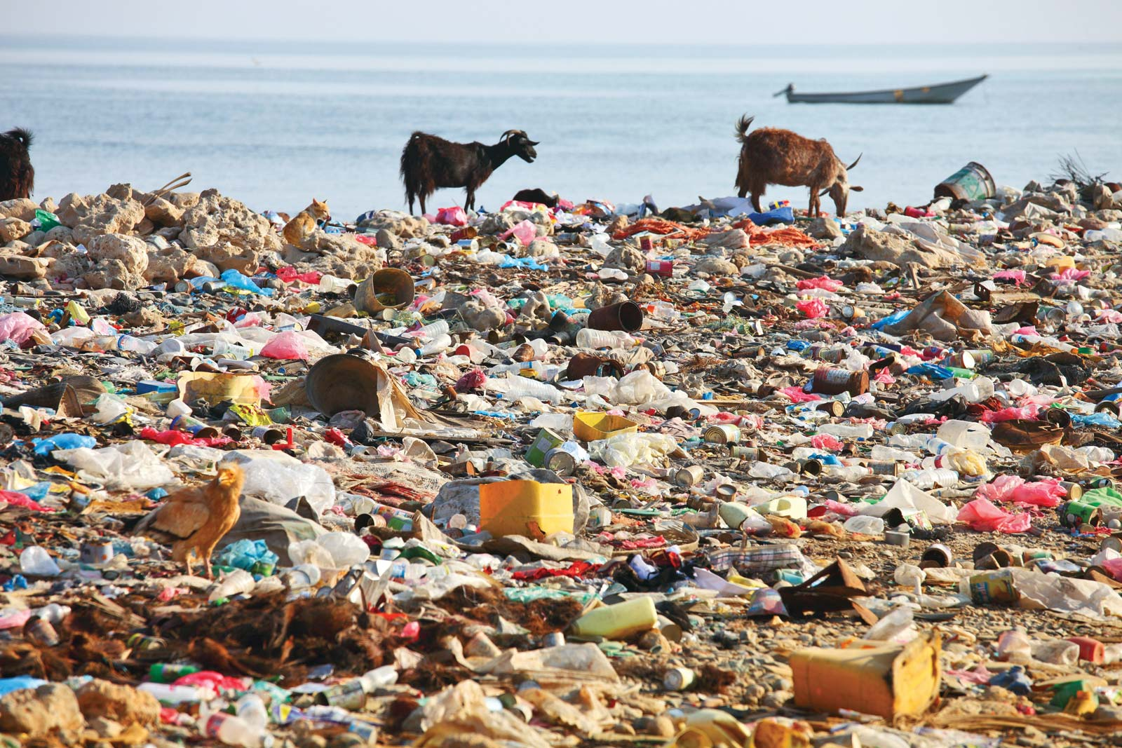 The menace of plastic pollution