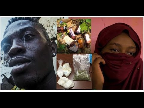 Shayi-Shayi Gang | Shocking Confessions Of Kano Drug Addicts